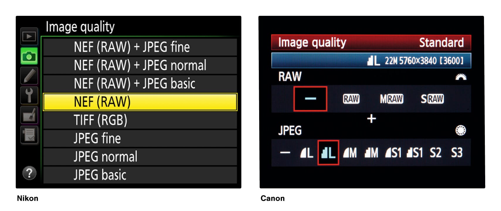 Nikon and Canon image file screens